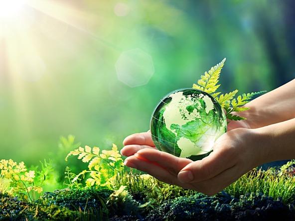 المكتبة الرقمية : طريقة عمل بحث البيئة للصف الأول الإعدادى