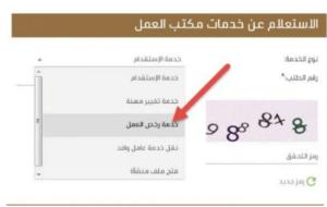 خدمات مكتب العمل الاستعلام عن رسوم مكتب العمل استعلام عن نطاق المنشأة