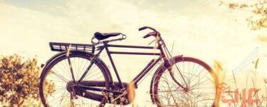 الدراجة في المنام