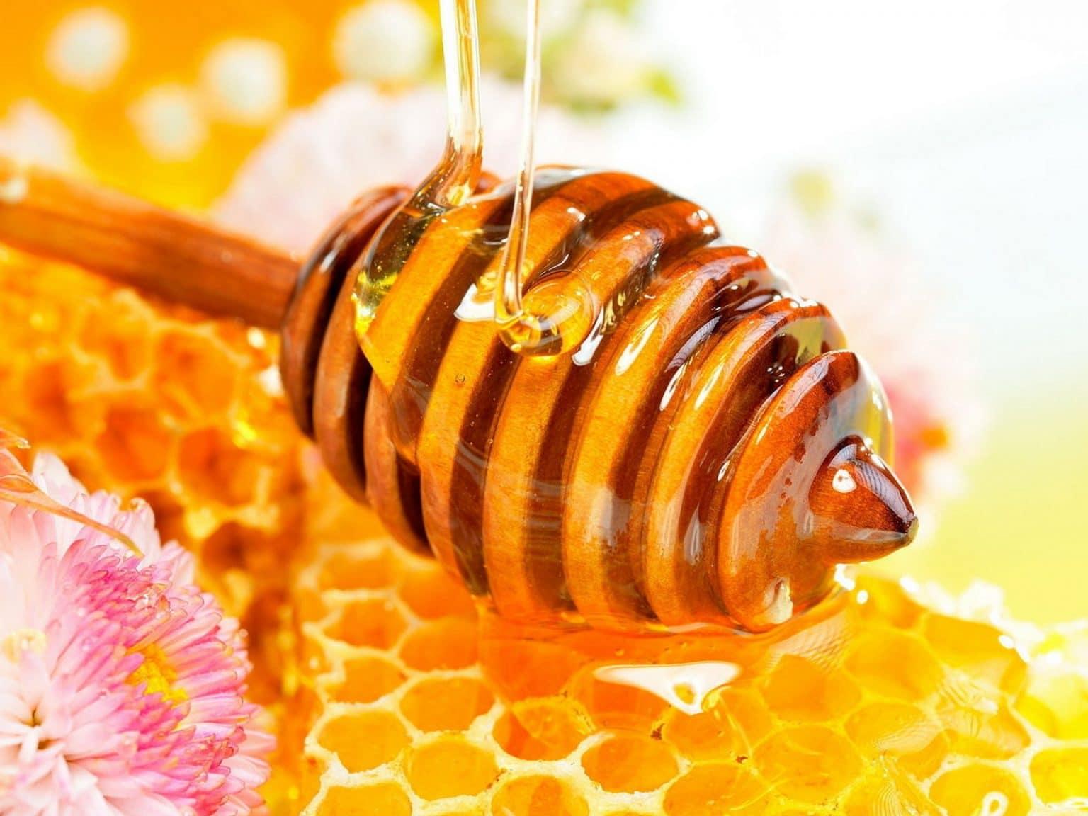 تفسير أكل العسل في المنام لابن سيرين