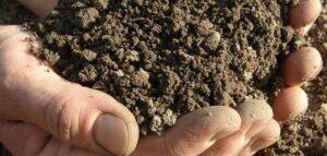تفسير رؤية الطين في المنام لابن شاهين