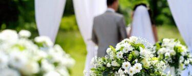 تفسير رؤية العرس في البيت في المنام لابن سيرين