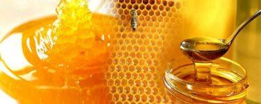 كيف اعرف ان العسل اصلي
