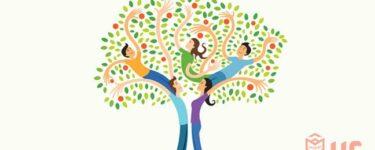 معرفة شجرة العائلة بالرقم القومى فى مصر