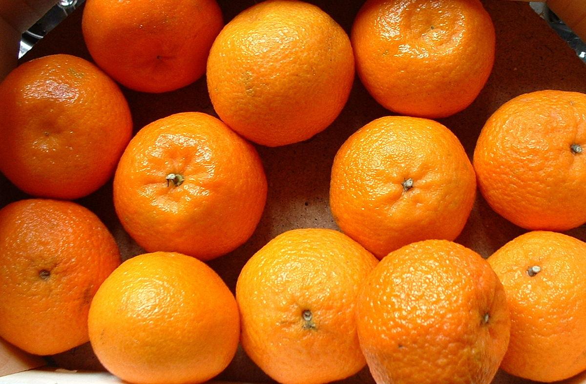 تفسير حلم أكل البرتقال في المنام